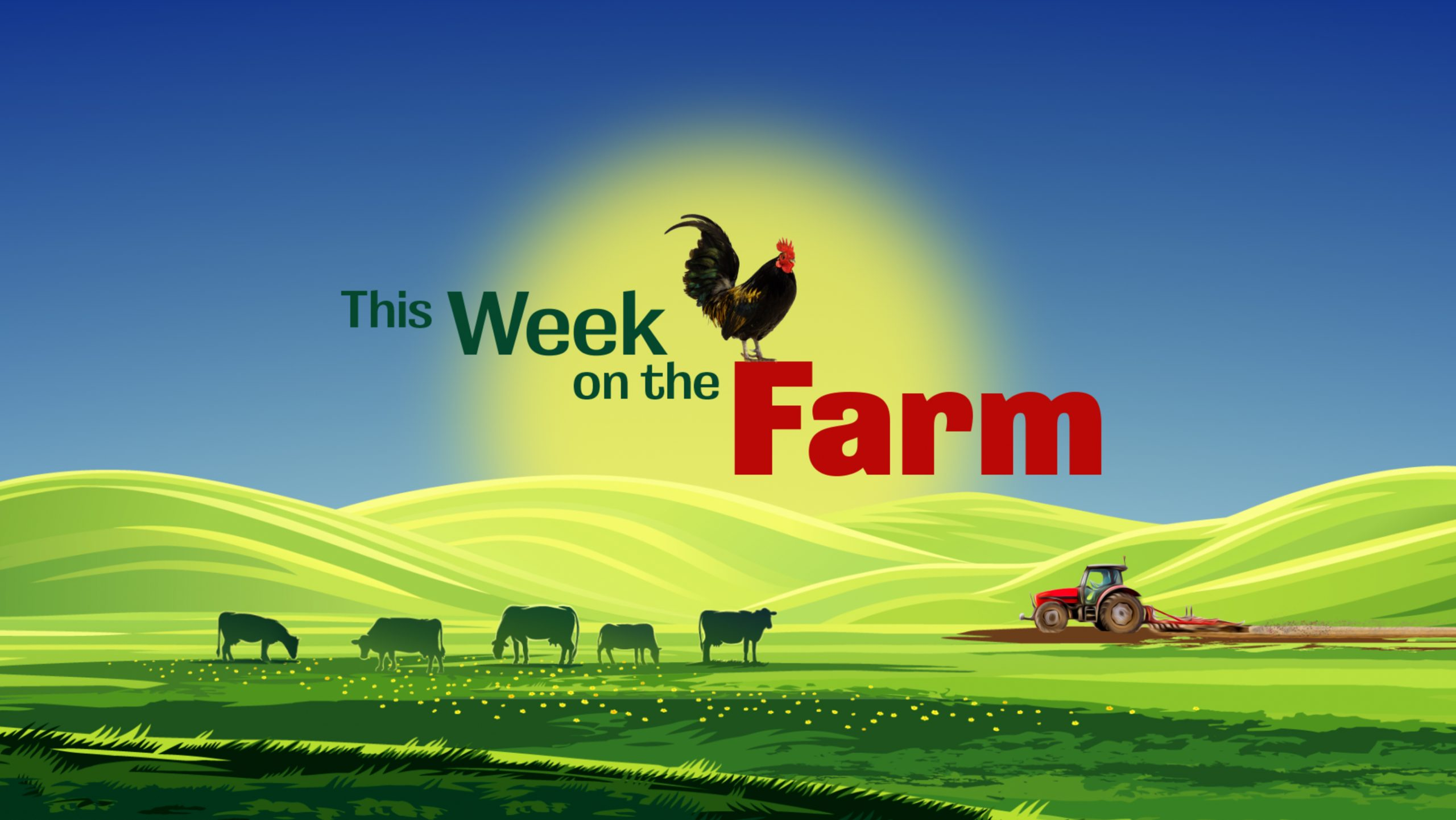 This-Week-on-the-Farm-High-Res-Logo-scaled